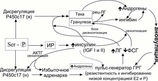 Рис. 1 Гипотетическая схема